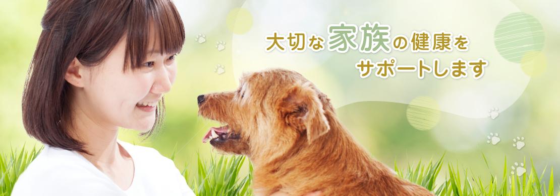 和歌山獣医総合病院